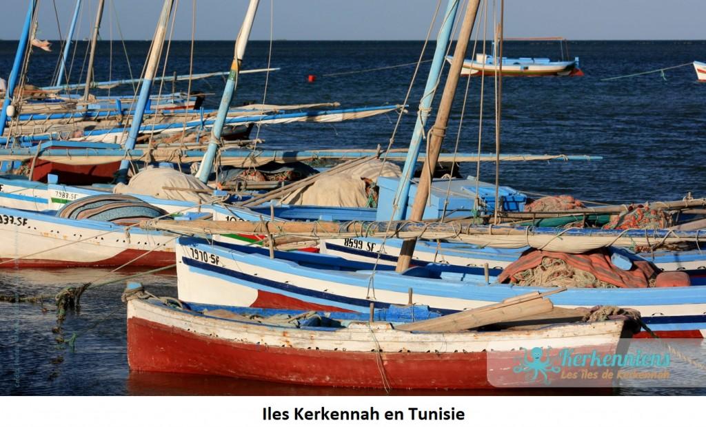 Barques  aux îles Kerkennah en Tunisie